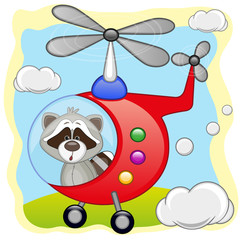Raccoon in helicopter