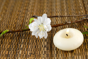 Cherry flower with candle and  on mat