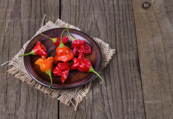 Exotic bell shaped capsicum over rustic wooden background