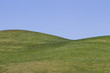 View of bare green hills with a blue sky. - 68566490