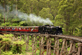 Puffing Billy, old steam train in Australia