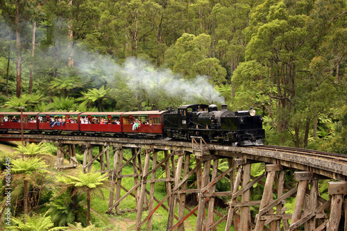 Foto op Canvas Australië Puffing Billy, old steam train in Australia