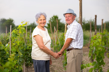 Senior Couple of man and woman in vineyard