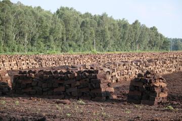Torfabbau in der Lüneburger Heide