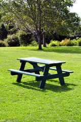 Picnic table at park on a sunny day.