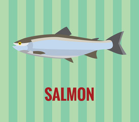 Salmon drawing on green background