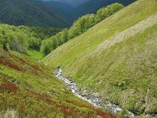 Весенние потоки воды на склонах гор