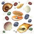 Shell - 68571034