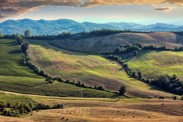 View of after harvest fields, Toscany, Italy