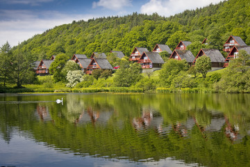Barend Holiday Village, Loch and Lodges. Swan Background