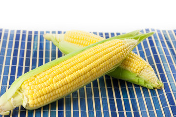 Freshly picked sweet corn with copy space