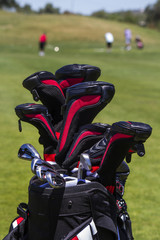 Close view of a professional bag full of golf clubs.
