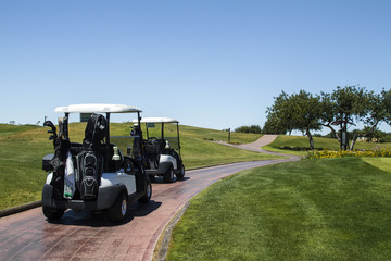 Landscape view of two golf cars on a golf course.
