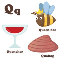 Alphabet Q letter.Quahog,Queen bee,Quencher