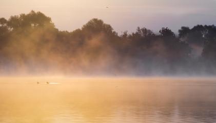 Mglisty ,słoneczny poranek nad rzeką