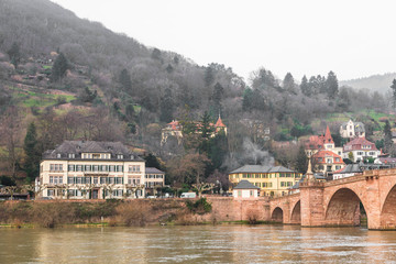 The houses on the mountain near the old bridge in Heidelberg