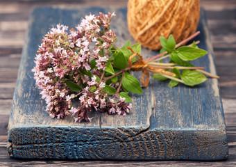 Marjoram Origanum vulgare herb blooming