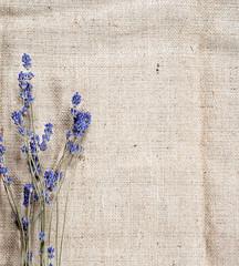 sack texture background