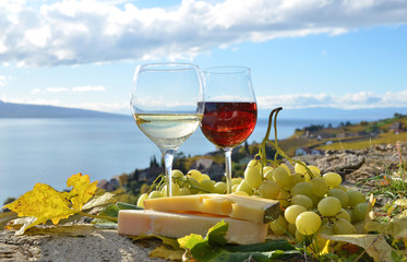 Wine, cheese and grapes on the terrace of vineyard in Lavaux reg