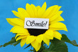 """Smile"" card on sunflower on blue background"