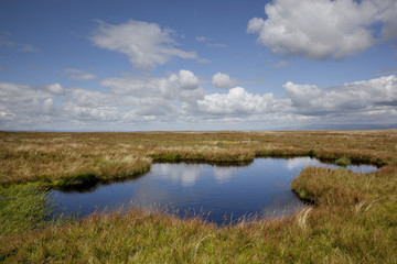 Lake on Wild Boar Fell