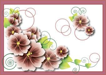 pinck flowers