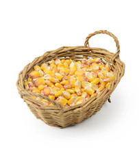 Corn seeds in basket