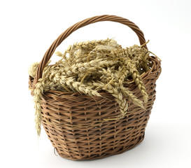 Ears of wheat in basket