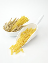 Spaghetti noodles and penne rigate pasta
