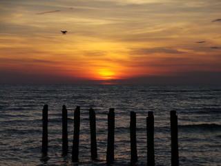 Drone invades sunset