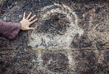 Petroglyph with goat