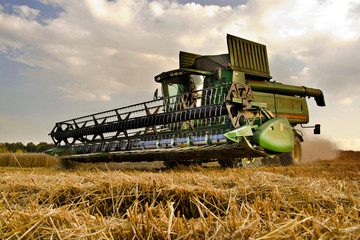 Combine harvester at work harvesting a field of wheat.