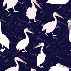 Pelican Seamless Pattern