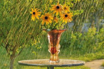 Летний дождь