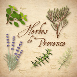 Fototapety Herbes de Provence, Lavender, Rosemary, Thyme, Fennel, Oregano
