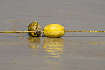 yellow buoy with rope on sea beach