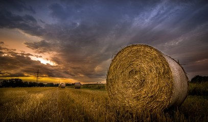 Bales of hay in the field during the morning sunrise