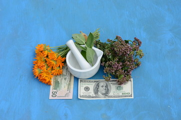 herbal medicine and money concept - health is money