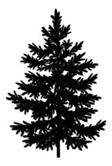 Christmas spruce fir tree silhouette