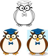 Wise Owl Teacher Cartoon Mascot Character Collection Set