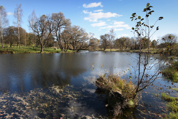 Lake panorama, with fodrest and blue sky