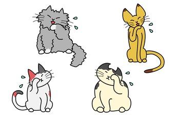 顔を洗う猫たち