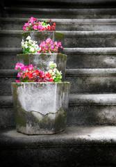vaso di fiori in pietra