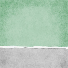 Square Light Green Grunge Torn Textured Background