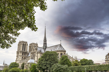 The Cathedral in Paris