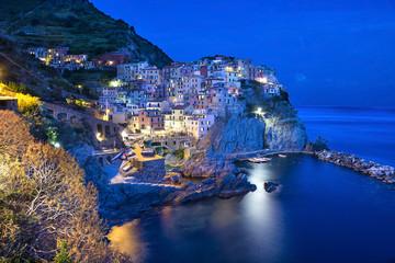 Manarola by night, Cinque Terre, Italy