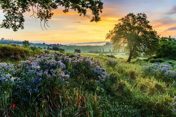Tuscan landscape at dawn