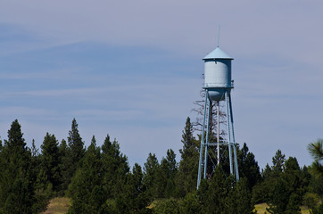 Water Tower Standing Above the Trees