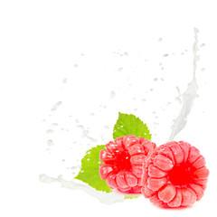 Milk splash raspberry