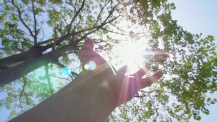 Sun in Hand. Slow Motion.